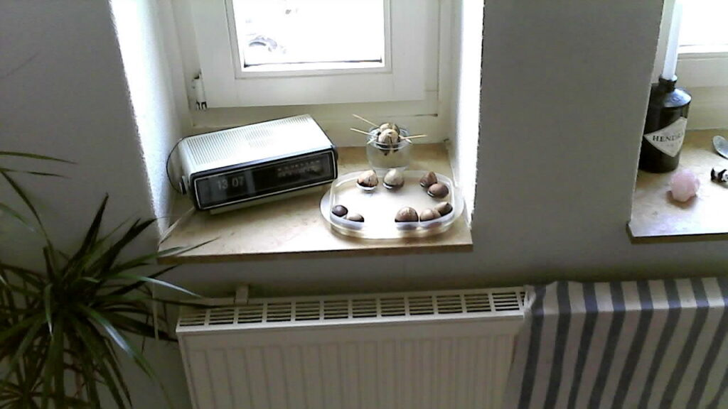 s idee quadrocopter test detaillierter testbericht zur drohne. Black Bedroom Furniture Sets. Home Design Ideas