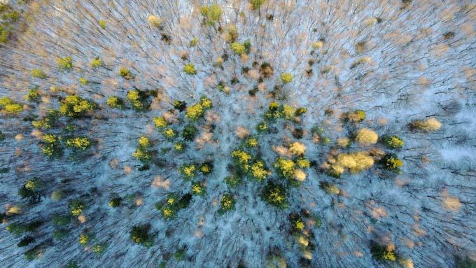 Kameradrohnen für schöne winterliche Luftbilder