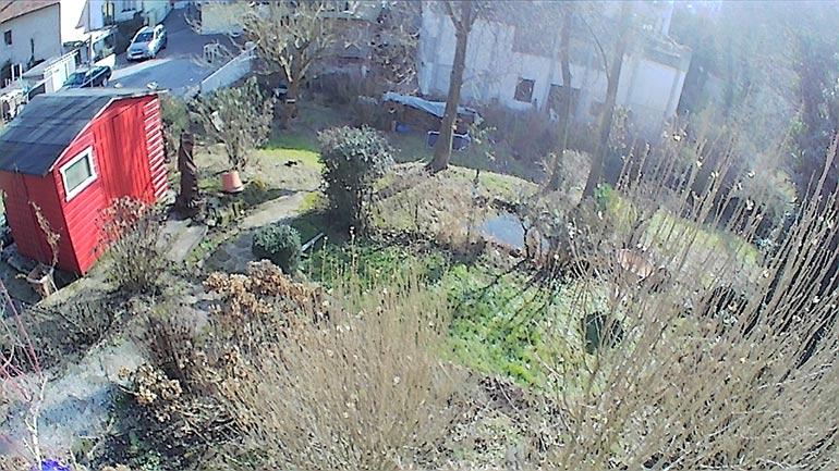 Test-Bild der Drone X Pro: Blick in den Garten